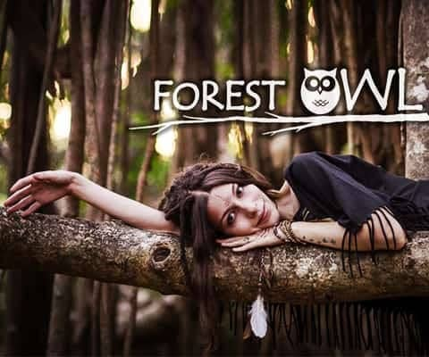 Бренд Forest Owl